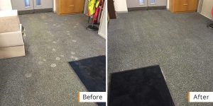 Business Carpet Cleaning Before and After