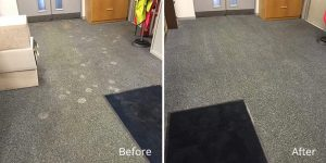 Business Carpet Cleaning Manchester