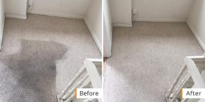 Carpet Cleaning Manchester Before and after