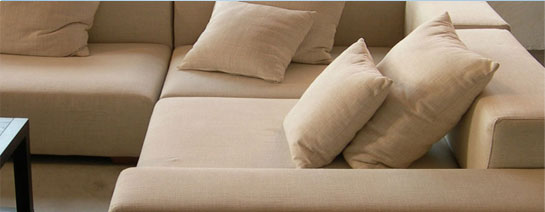 specialist sofa cleaning services