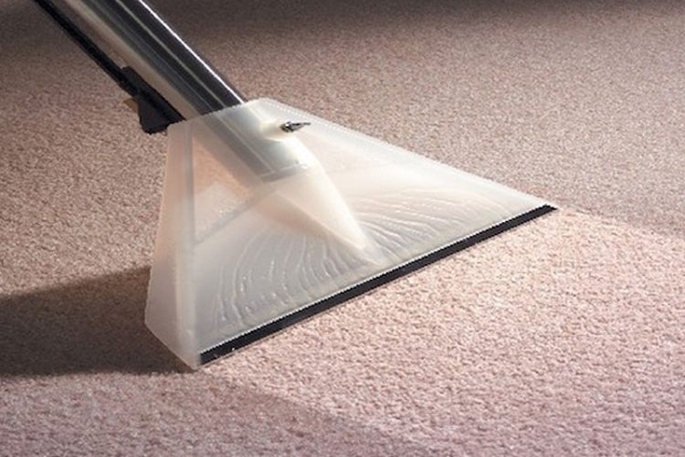 Carpet cleaning services in Manchester