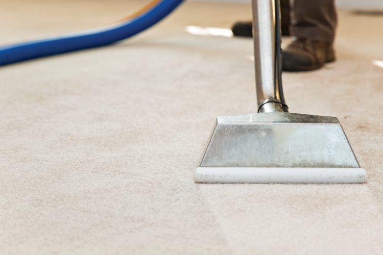 Best carpet cleaner in Manchester