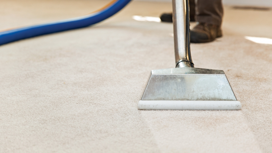 Why A Professional Company Can Be The Best Carpet Cleaner